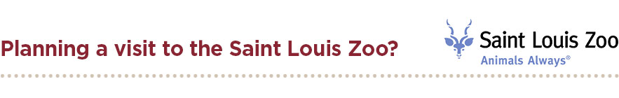 Planning a visit to the Saint Louis Zoo?