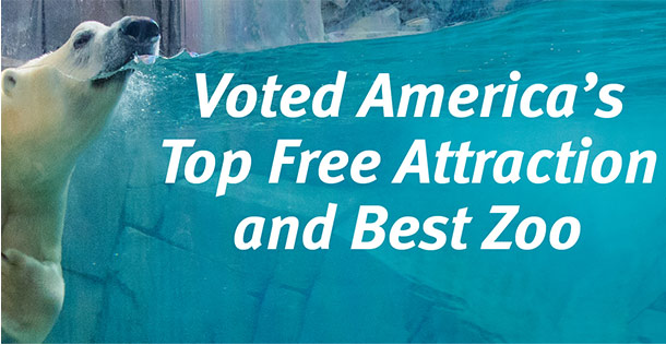 Saint Louis Zoo voted America's Top Free Attraction and Best Zoo