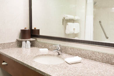 Drury Inn & Suites Birmingham Lakeshore Drive - Guest Bathroom