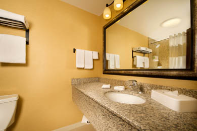 Drury Inn & Suites Airport Phoenix - Guest Bathroom