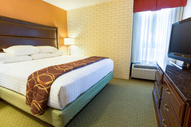 Drury Inn & Suites Near The Tech Center Denver - King Suite