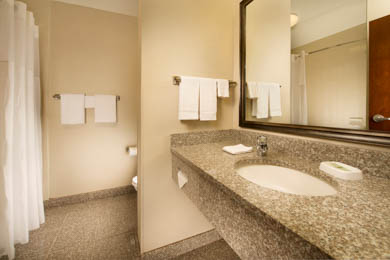 Drury Inn & Suites Orlando - Guest Bathroom