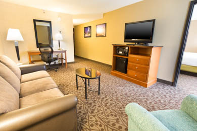 Drury Inn & Suites Atlanta Airport - Suite