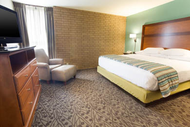 Drury Inn & Suites South Atlanta - King Suite