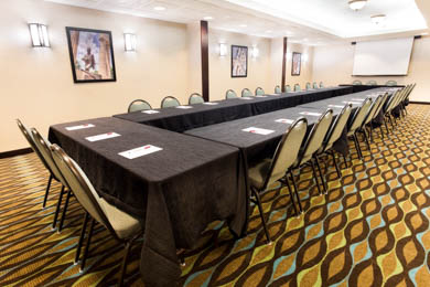 Drury Inn & Suites South Atlanta - Meeting Room