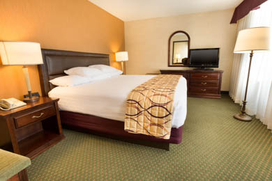 Drury Inn & Suites East Evansville - King Suite