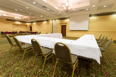 Drury Inn & Suites Northeast Indianapolis - Meeting Room