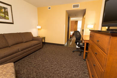 Drury Inn & Suites Frankenmuth - Suite