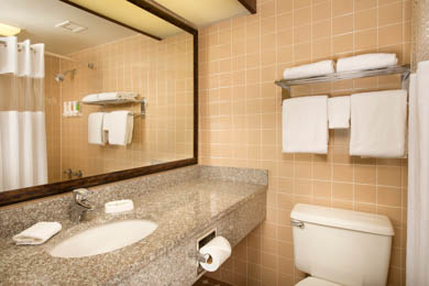 Drury Inn & Suites Fenton - Guest Bathroom
