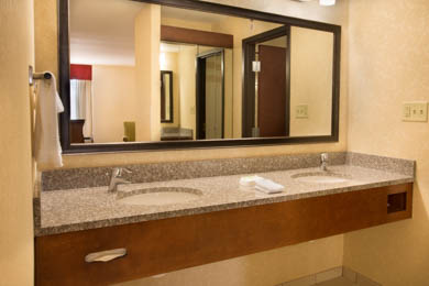 Drury Inn & Suites North Charlotte - Guest Bathroom