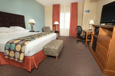 Drury Plaza Hotel North San Antonio - Deluxe King Room