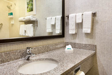 Drury Inn & Suites Montgomery - Guest Bathroom