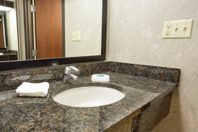 Drury Inn & Suites Greensboro - Guest Bathroom