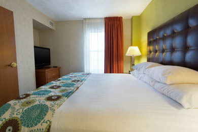 Drury Inn & Suites McAllen - Specialty Guestroom
