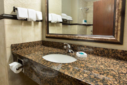 Drury Inn & Suites Flagstaff - Guest Bathroom