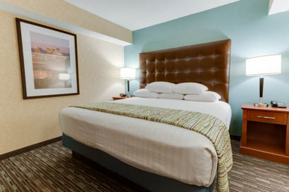 Drury Inn & Suites Birmingham Grandview - Suite