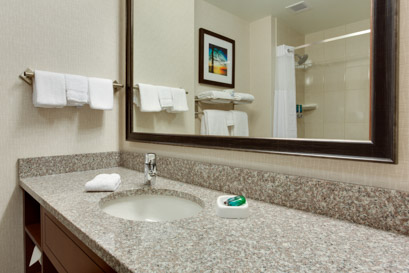 Drury Inn & Suites Charlotte Arrowood - Guest Bathroom