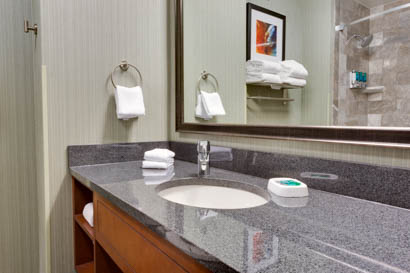 Drury Inn & Suites - Phoenix Chandler - Bathroom