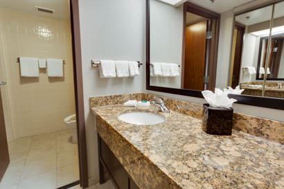 Drury Inn & Suites San Antonio Northeast - Guest Bathroom