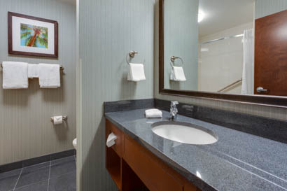Drury Inn & Suites - Gainesville - Bathroom