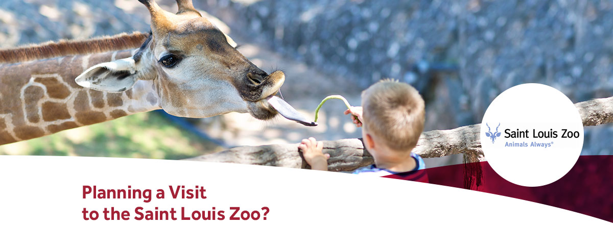 Drury Hotels is an official hotel partner of the Saint Louis Zoo