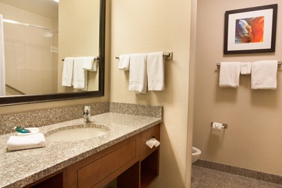 Drury Inn & Suites Phoenix Tempe - Bathroom