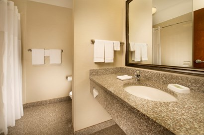 Drury Inn & Suites near Universal Orlando Resort™ - Bathroom