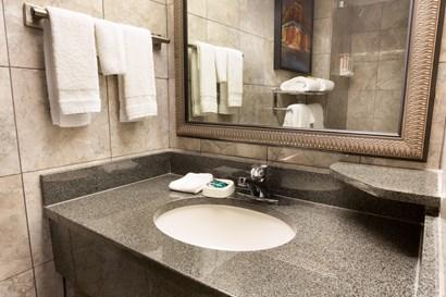 Drury Inn & Suites New Orleans - Bathroom