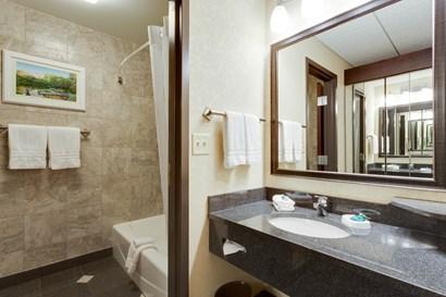 Drury Plaza Hotel at the Arch - Bathroom