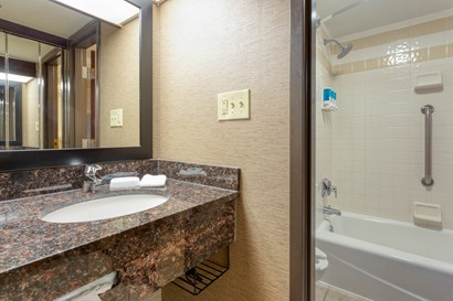 Drury Inn & Suites Atlanta Airport - Bathroom