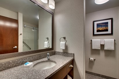 Drury Inn & Suites Iowa City Coralville - Bathroom